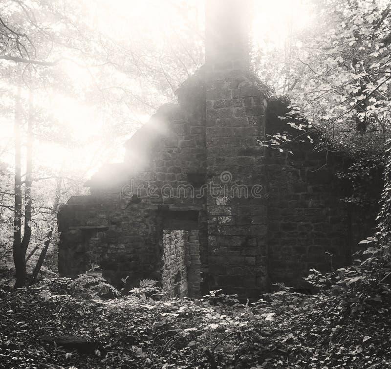 Un vieux bâtiment abandonné de moulin dans les bois photos stock