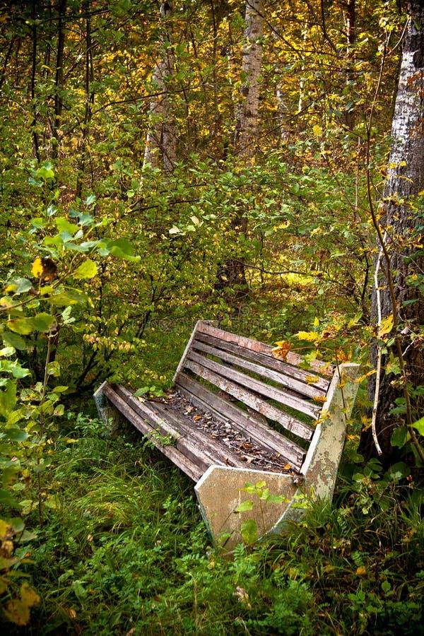 Un vieux banc en parc envahi abandonné image libre de droits