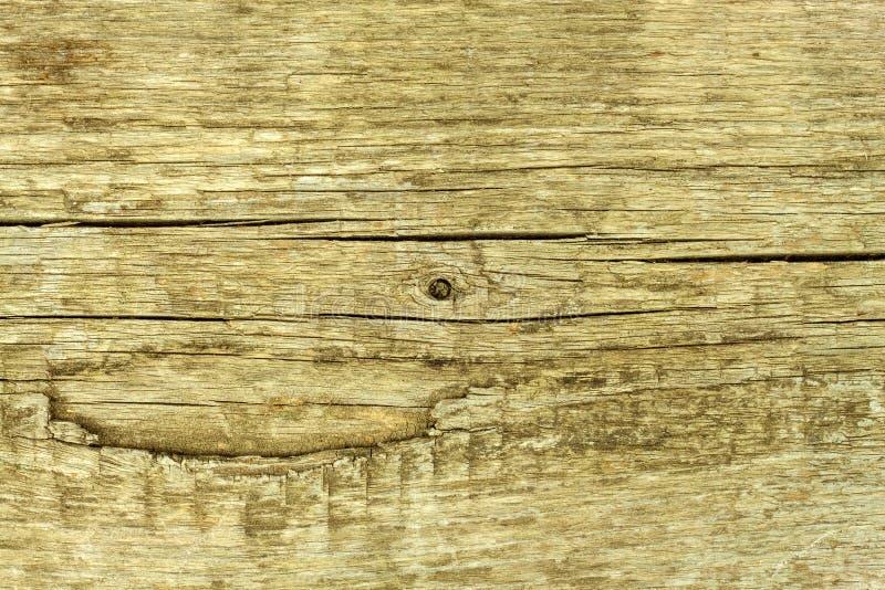 Un vieux conseil en bois Rétro fond Place pour le texte Détail de la structure en bois photographie stock libre de droits