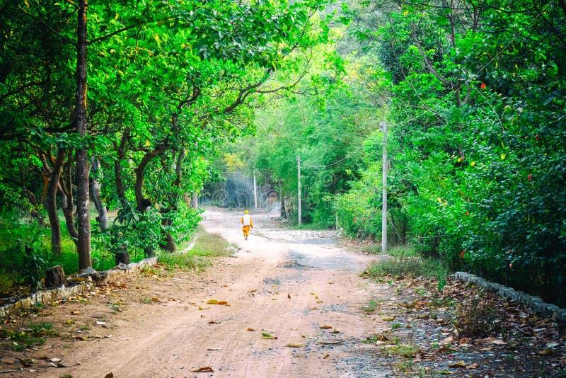 Un vieux moine marche dans la forêt photos libres de droits