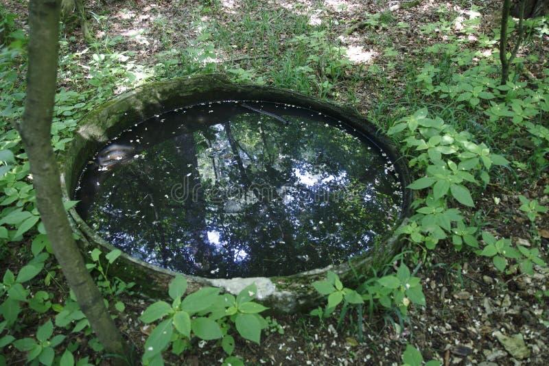 Un vieux puits, baril enterré rempli avec de l'eau dans la forêt noire Baden-Baden, Sandweier photos stock