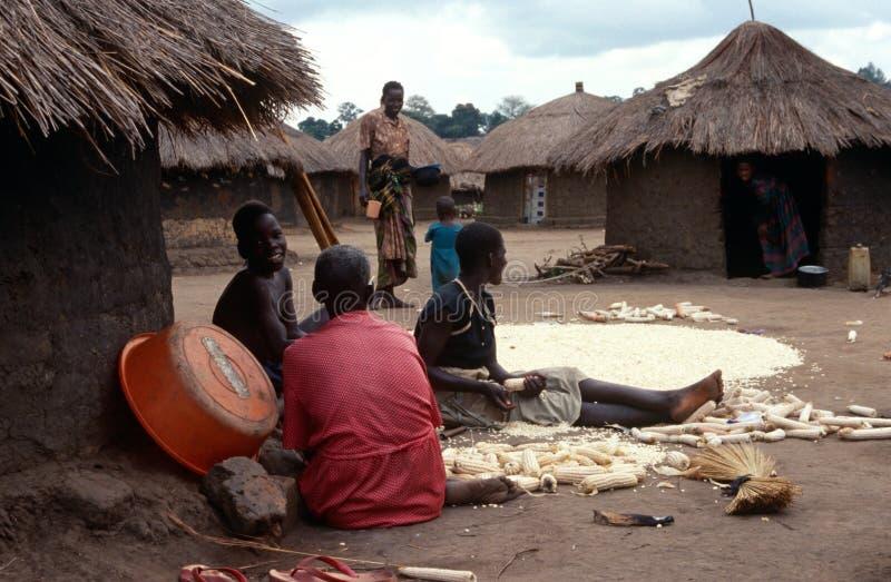 Un villaggio nell'Uganda del Nord. fotografia stock libera da diritti