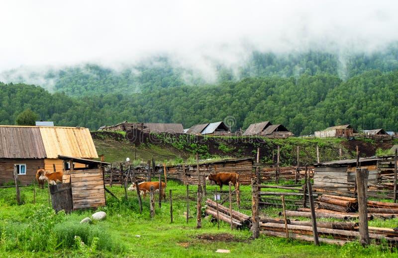 Un villaggio in Xinjiang fotografia stock libera da diritti