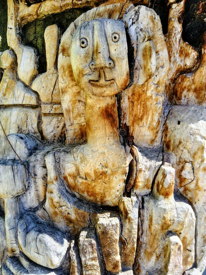 Un visage dans l'arbre photos libres de droits