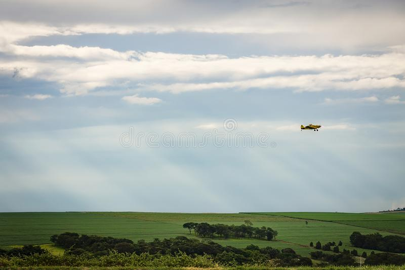 Un volo dello spolveratore del raccolto su un giacimento della canna da zucchero immagini stock