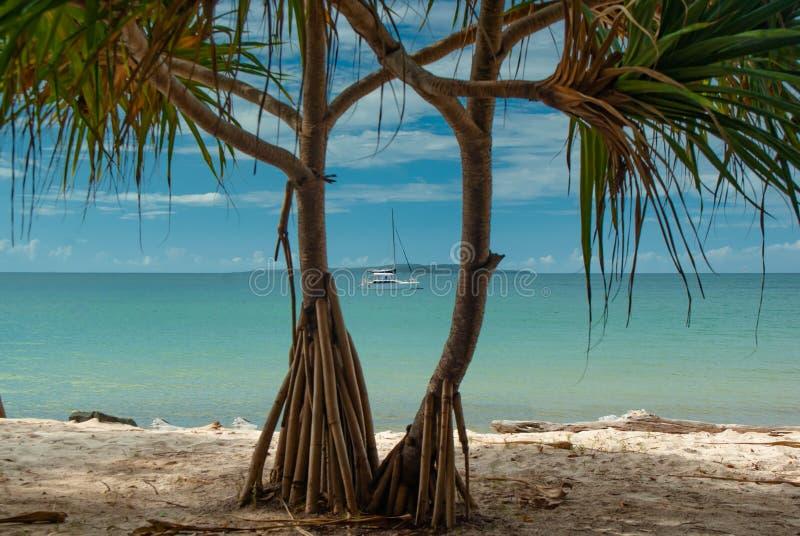 Un yate anclado de Fraser Island Coast tropical imagen de archivo