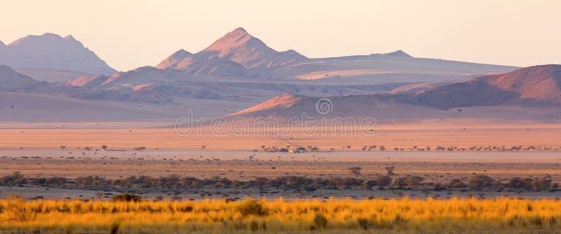 Una última hora de la tarde, ancho-cosechada, la vista de los llanos y las colinas puntearon alrededor del área de la naturaleza  fotografía de archivo libre de regalías