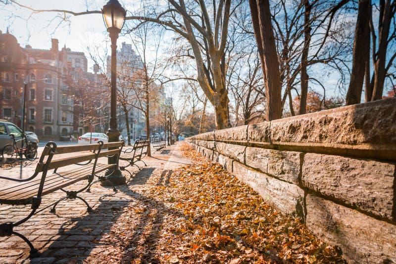 Una acera hoja-cubierta en Nueva York imagenes de archivo