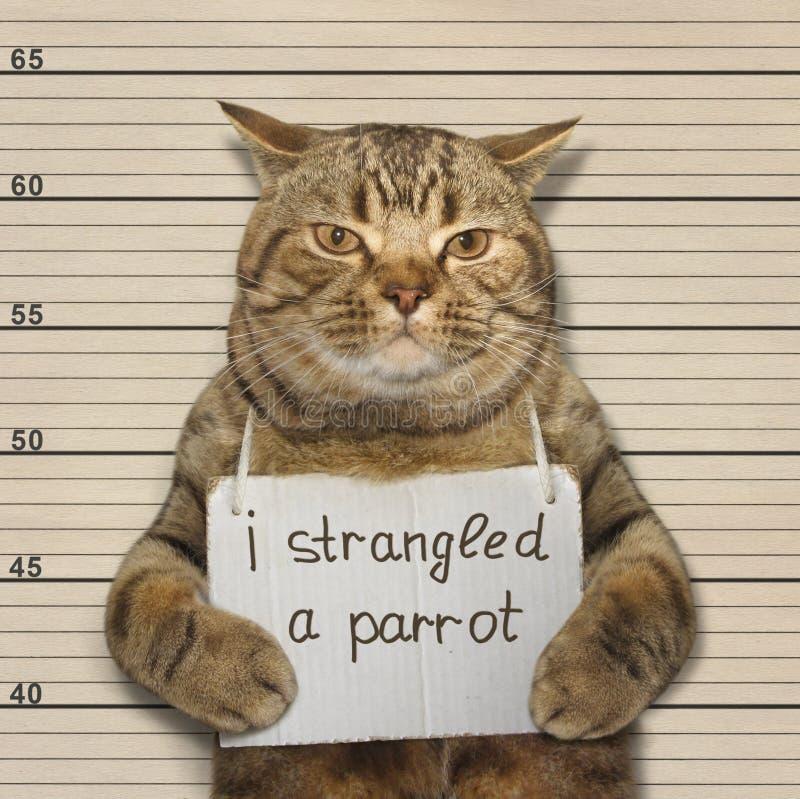 Una anecdotario del gato un loro foto de archivo