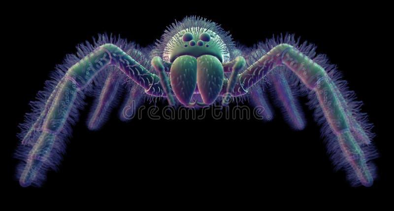 Una araña ilustración del vector