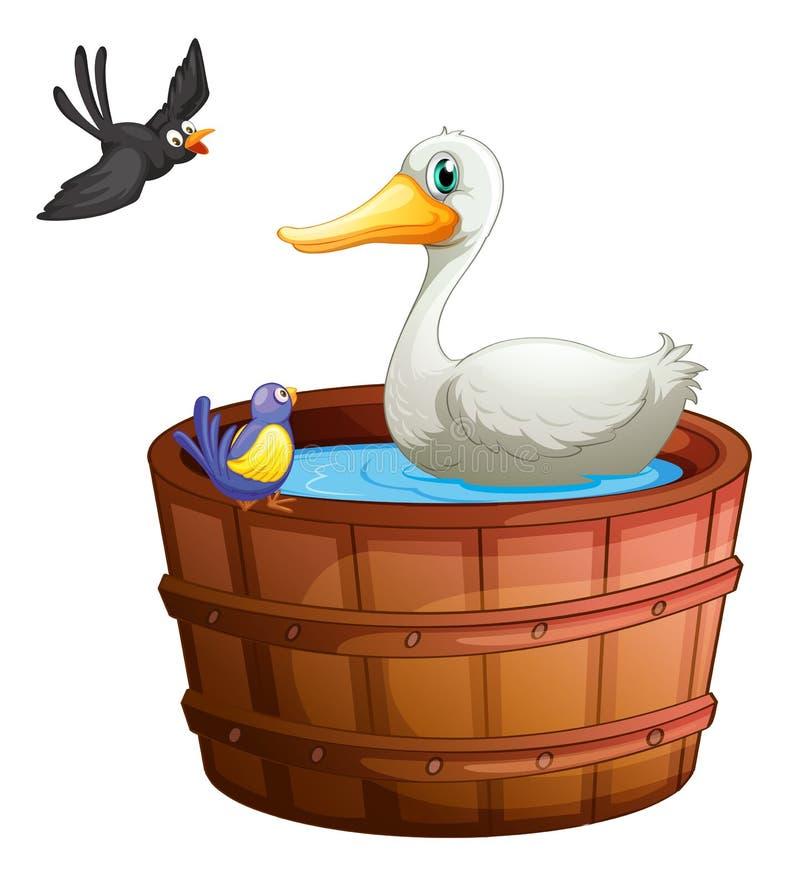 Una bañera con los pájaros ilustración del vector