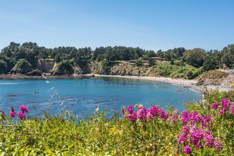 Una bahía en la costa de Mendocino imagen de archivo