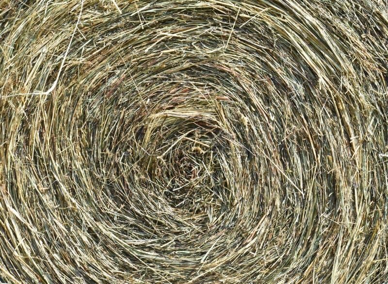 Una bala de heno se sienta en un campo fotografía de archivo