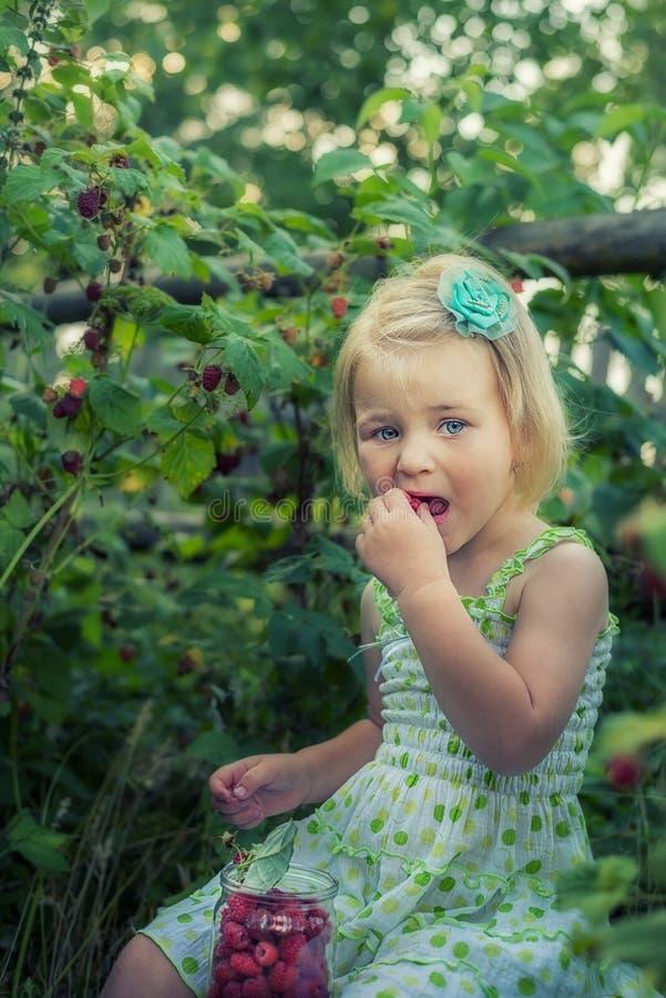 Una bambina con una latta delle bacche del lampone nel giardino immagini stock