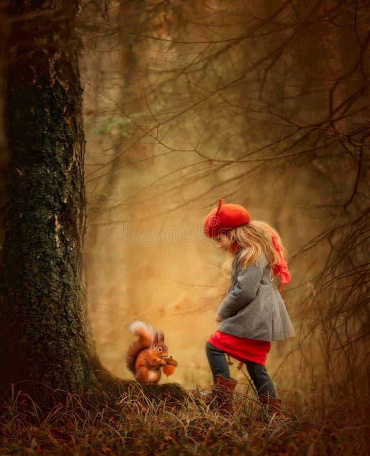 Una bambina con scoiattolo in una foresta d'autunno fotografia stock libera da diritti