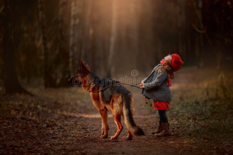 Una bambina con un pastore tedesco in una foresta d'autunno fotografia stock libera da diritti