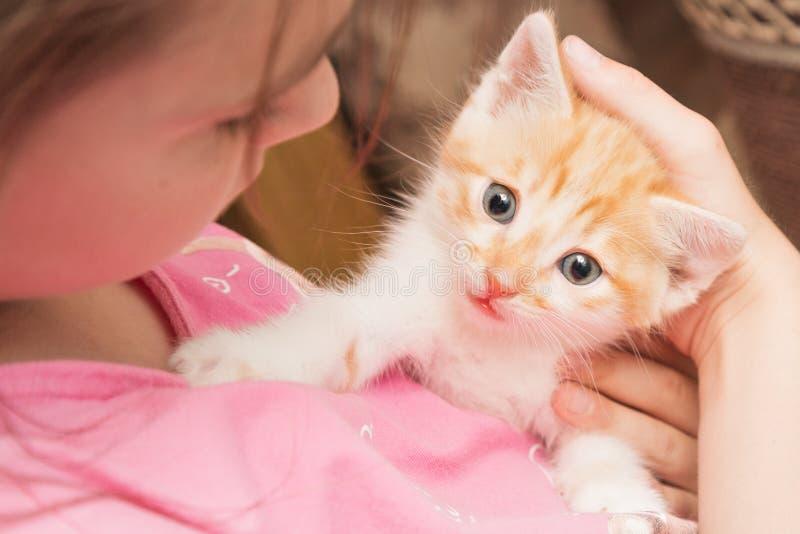 Una bambina tiene un gattino lei armi ed abbraccia fotografia stock