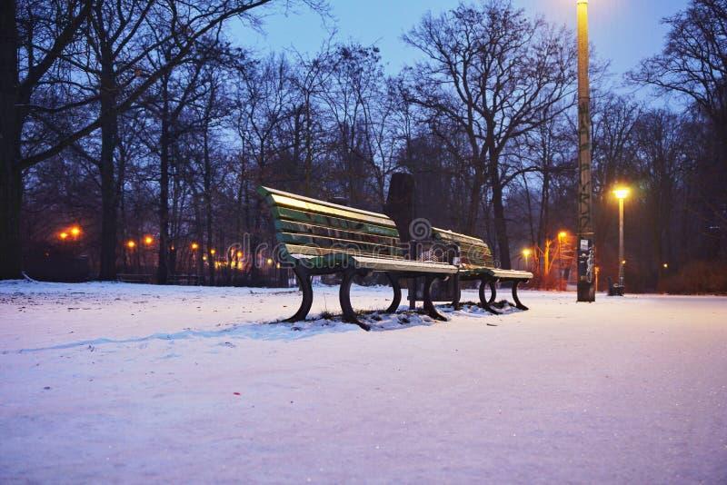 Una banca in parco nell'inverno fotografia stock