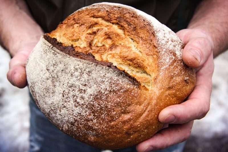 Una barra de pan en su mano imagen de archivo libre de regalías
