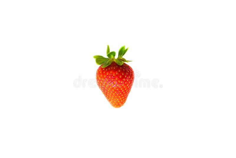 Una baya de fresa madura fotos de archivo libres de regalías