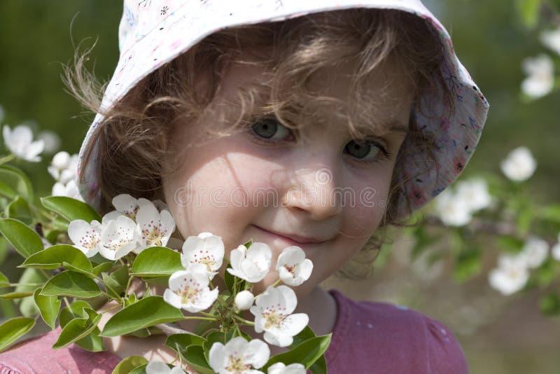Una bella bambina con i riccioli, in un cappello di Panama, vicino ad un ramo di fioritura di di melo Sly, covando, occhiata curi immagini stock libere da diritti
