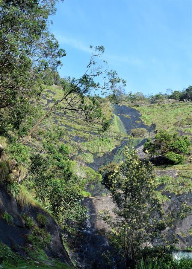 Una bella cascata nella foresta fotografia stock