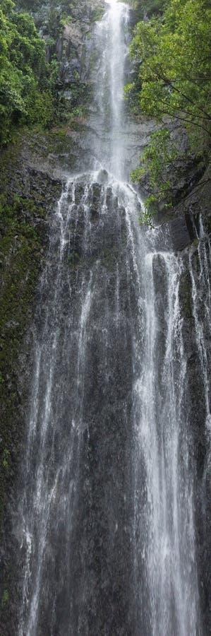 Una bella cascata sulla strada a Hana in Maui, Hawai fotografia stock libera da diritti