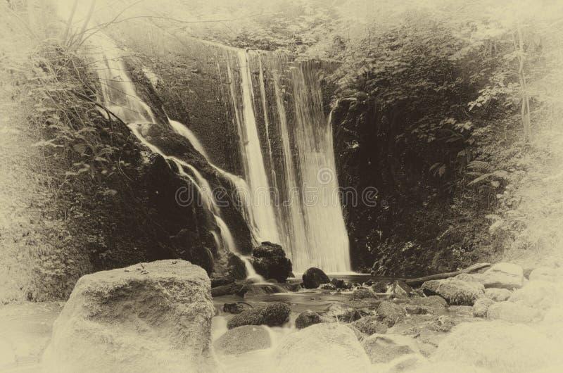 Una bella cascata in una valletta scozzese immagine stock libera da diritti