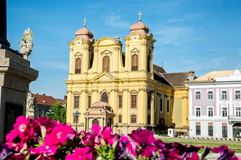 Una bella cattedrale con bello reale colora, in Timisoara, la Romania immagini stock