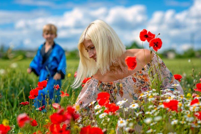Una bella, donna attraente e bionda con il figlio raccoglie i fiori del prato sull'orlo del campo Fuoco molle immagini stock libere da diritti