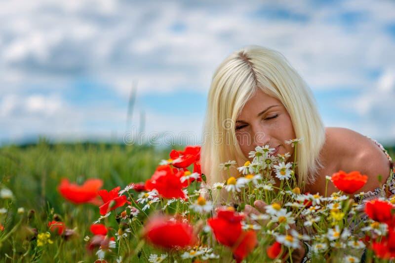 Una bella, donna attraente e bionda raccoglie i fiori del prato sull'orlo del campo Fuoco molle immagine stock