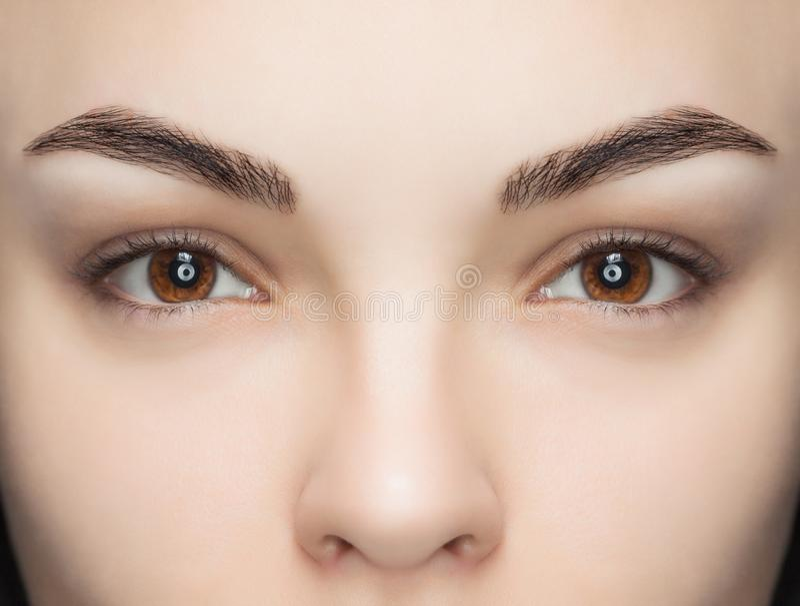 Una bella donna con i cigli unextinguished in un salone di bellezza fotografia stock libera da diritti