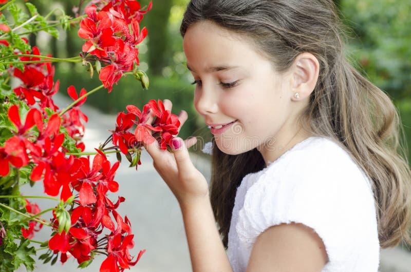 Una bella ragazza pronta per la comunione, ha un odore di fiori rossi all'aperto immagine stock