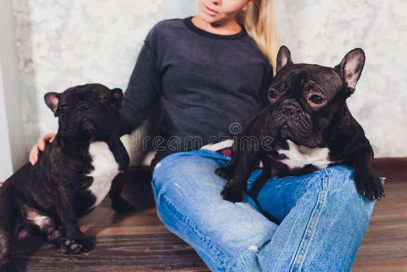 Una bella ragazza si siede e tiene molto piccolo cucciolo di un cane del bulldog francese fotografia stock