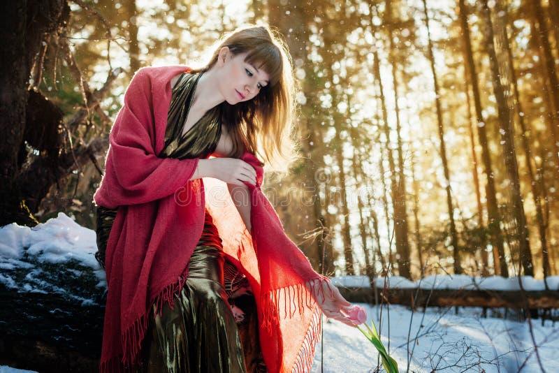 Una bella ragazza in un vestito dall'oro si siede in una foresta soleggiata della molla ed esamina un tulipano fotografie stock