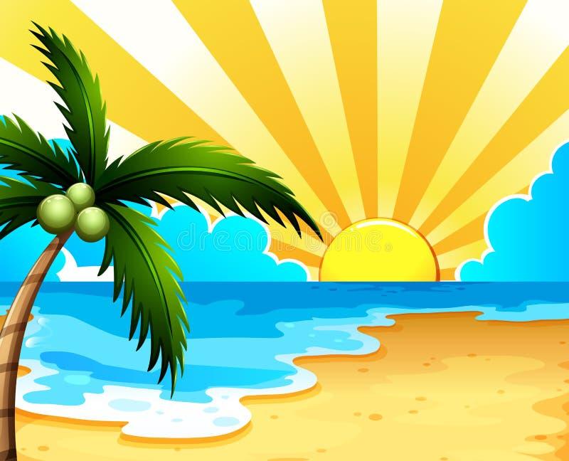Una bella spiaggia con un cocco illustrazione di stock