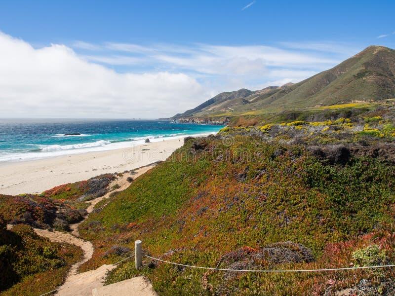 Una bella vista della linea costiera di California lungo la strada principale 1, Big Sur immagine stock