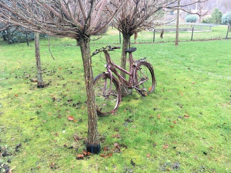 Una bici persa nel parco fotografia stock libera da diritti