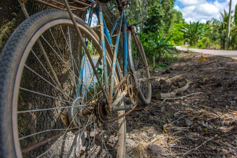 Una bicicleta azul vieja que pone en un árbol por un camino abandonado afuera en el campo de Vietnam fotografía de archivo