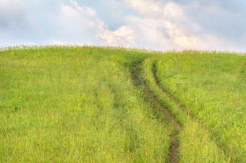 Una bobina ascendente del camino de tierra del país en la hierba alta en las montañas de Altai, Kazajistán, el mañana del com fotos de archivo