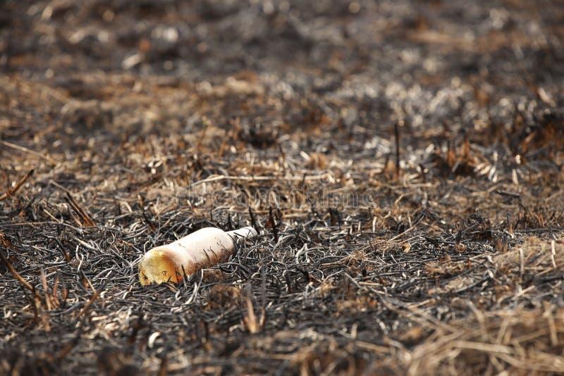 Una botella carbonizada de cristal vacía está mintiendo en la hierba que se ha cocido hacia fuera Catástrofe ecológica La primave imagenes de archivo
