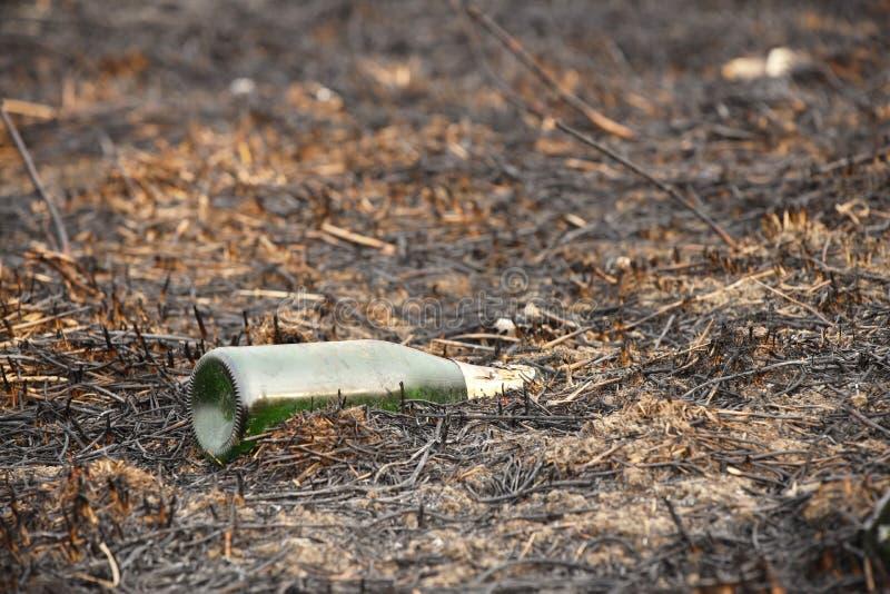 Una botella carbonizada de cristal vacía está mintiendo en la hierba que se ha cocido hacia fuera Catástrofe ecológica La primave fotografía de archivo libre de regalías