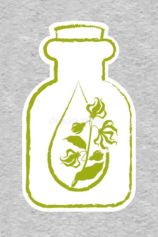 Una botella con el aceite esencial del ylang-ylang Ramas del árbol del cananga stock de ilustración