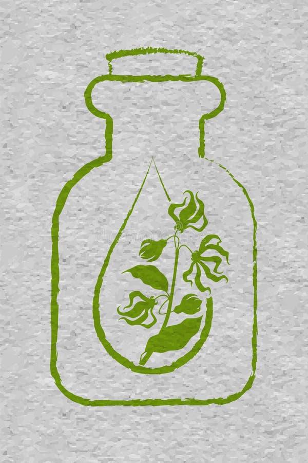 Una botella con el aceite esencial del ylang-ylang Ramas del árbol del cananga ilustración del vector