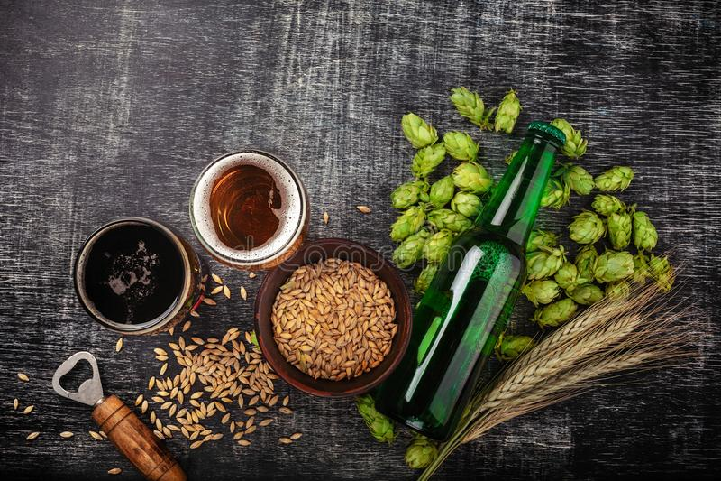 Una botella de cerveza con los saltos, la avena, las espiguillas del trigo, el abrelatas y los vidrios verdes con la cerveza oscu fotografía de archivo libre de regalías