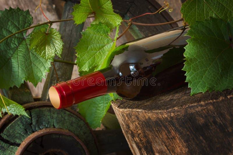 Una botella de vino en el fondo de la vid foto de archivo