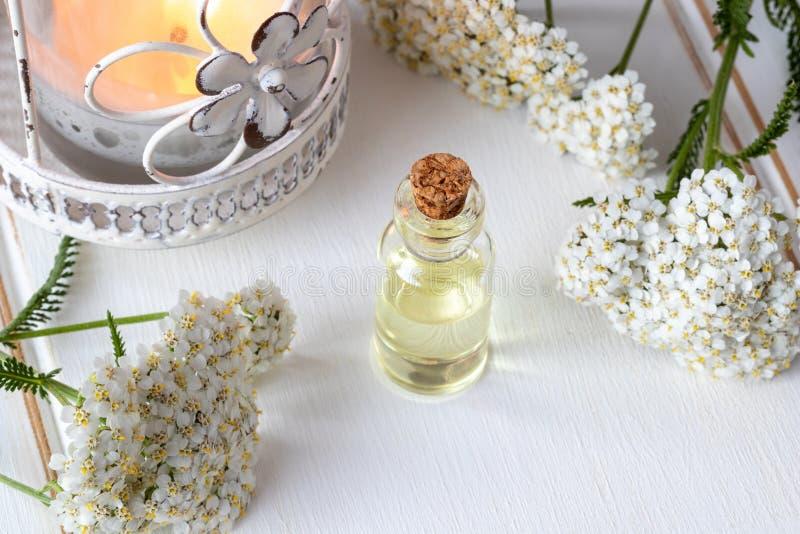 Una botella transparente de aceite esencial con milenrama floreciente fresca fotos de archivo