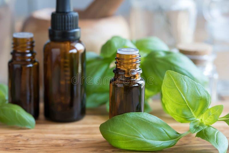 Una bottiglia dell'olio essenziale del basilico con basilico fresco va fotografie stock libere da diritti