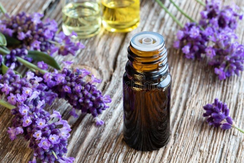Una bottiglia dell'olio essenziale della lavanda con lavanda di fioritura fresca immagine stock libera da diritti