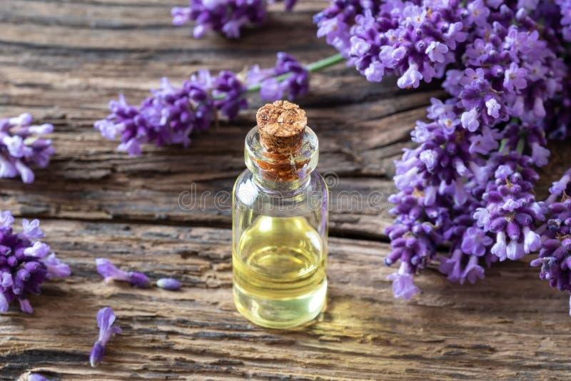 Una bottiglia dell'olio essenziale della lavanda con lavanda di fioritura fresca immagini stock libere da diritti